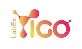 Logo Labex IGO